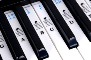 musical keyboard stickers