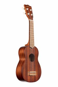 Best ukulele for beginners in india