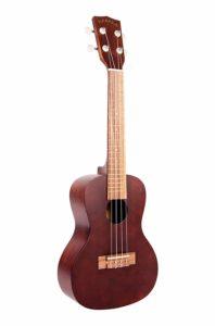 kala concert ukulele